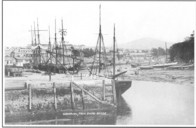 Sailing ships in Harbour.